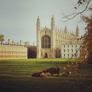 Colleges and Museums in Cambridge